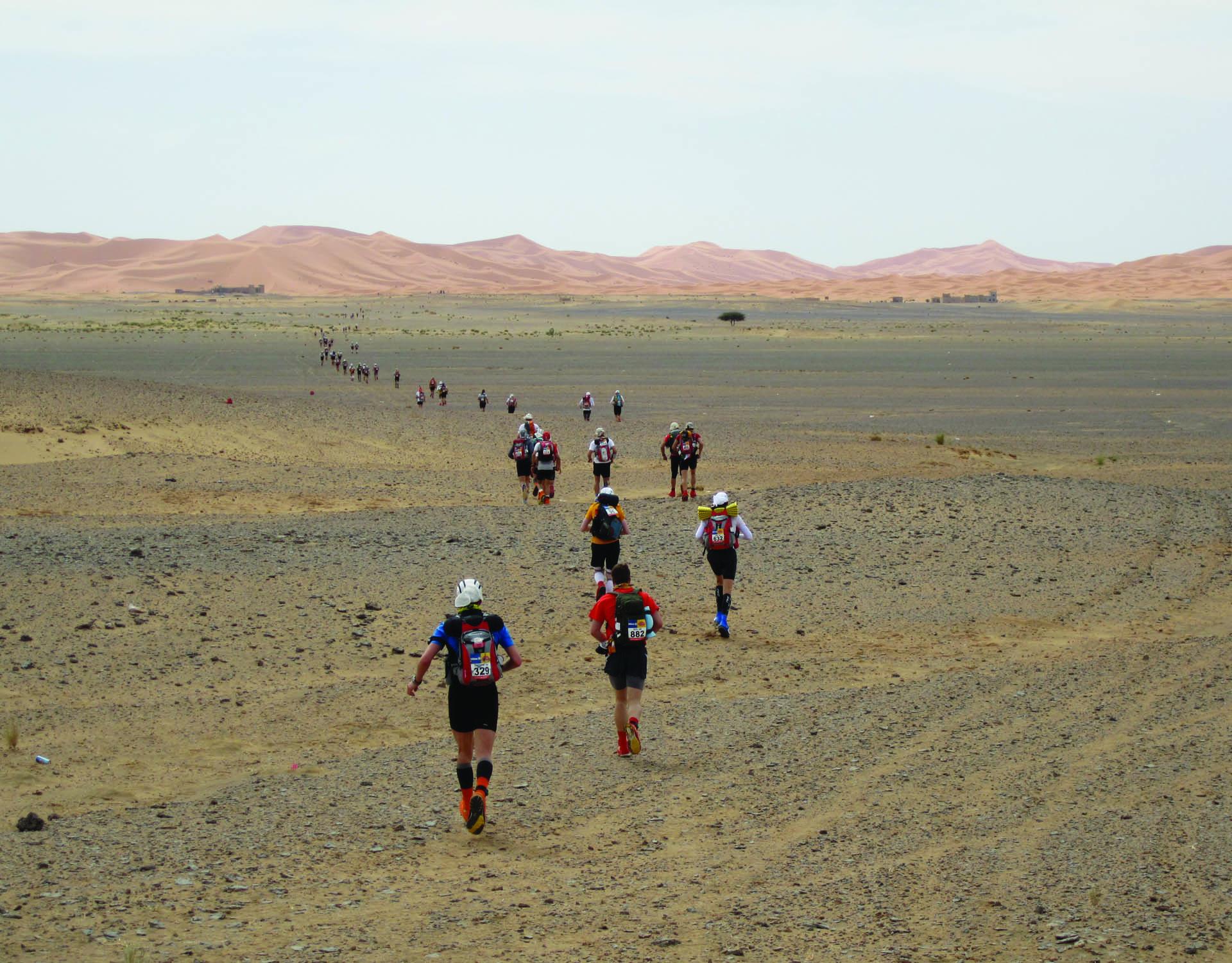 marathon-des-sables-large-image